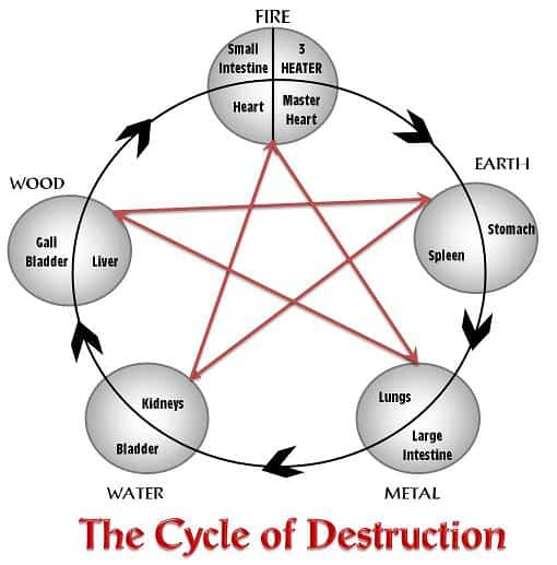 Get your Free Cycle of Destruction Video