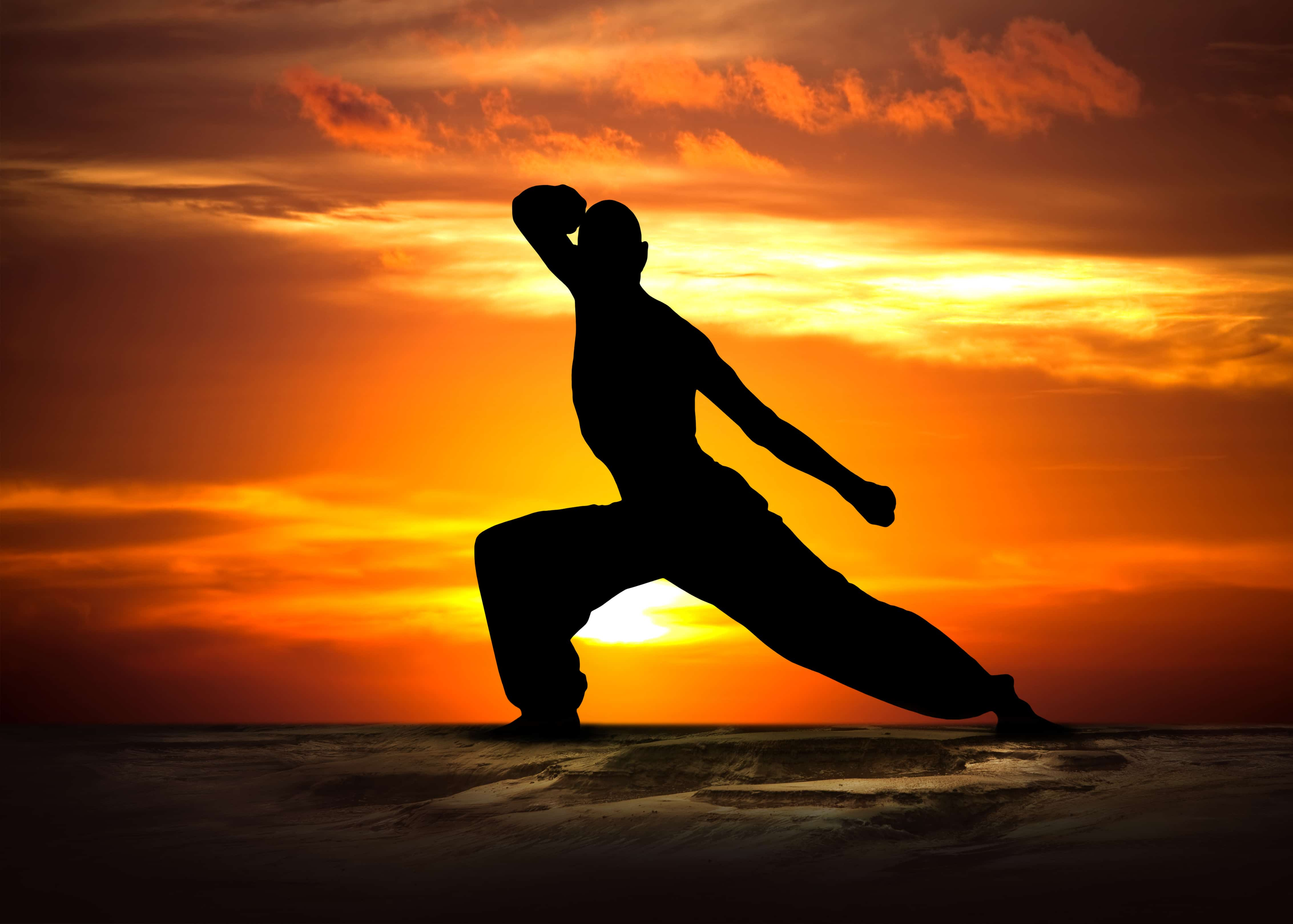 Martial Arts Training - It's about Body - Mind and Spirit