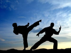 Martial Arts World Today