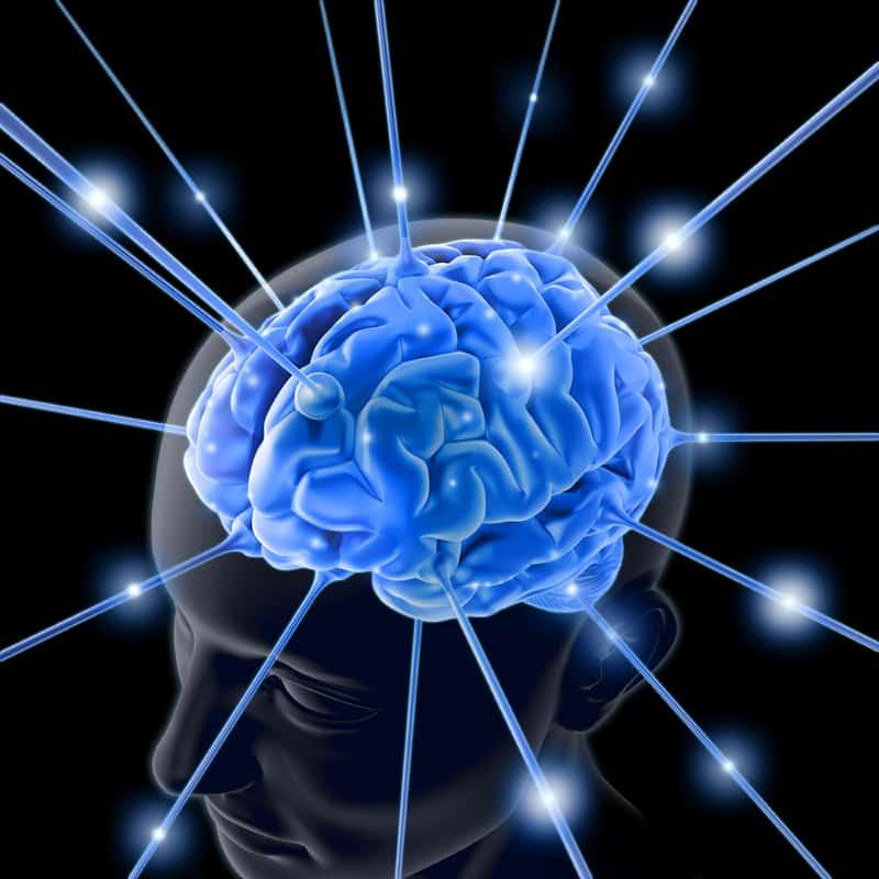 Self Defense Mind Control