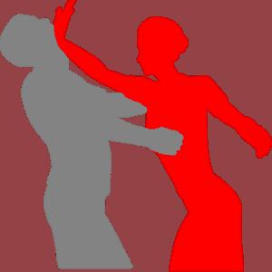 Understanding Self Defense Today