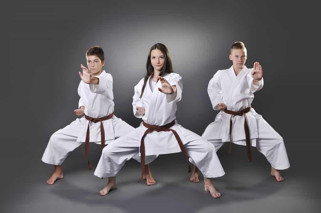 Kyusho Jitsu Stances Work