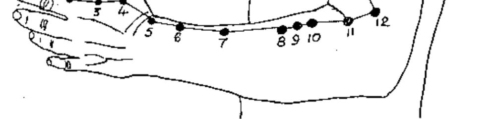 Pressure Point LI-10 [Large Intestine 10] - Painful Arm Pressure Point