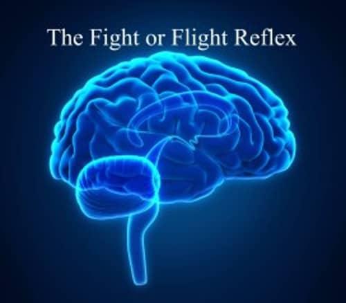 * Kyusho Fight-Flight Reflex