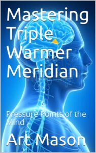 ( Mastering Triple Warmer